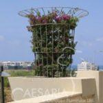 מגן עץ מעוצב – מרקיז 850